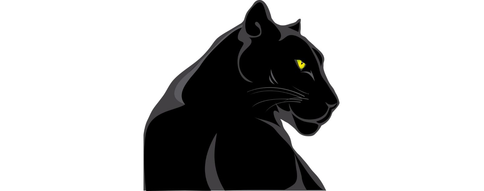 Animal Totem de la Panthère Noir
