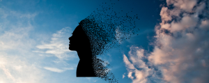 Read more about the article Comment Combattre le Stress Naturellement