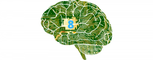 Read more about the article Les 8 Type d'intelligence