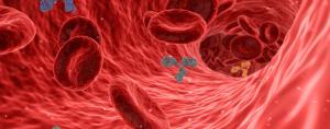 Read more about the article Comment renforcer votre système immunitaire